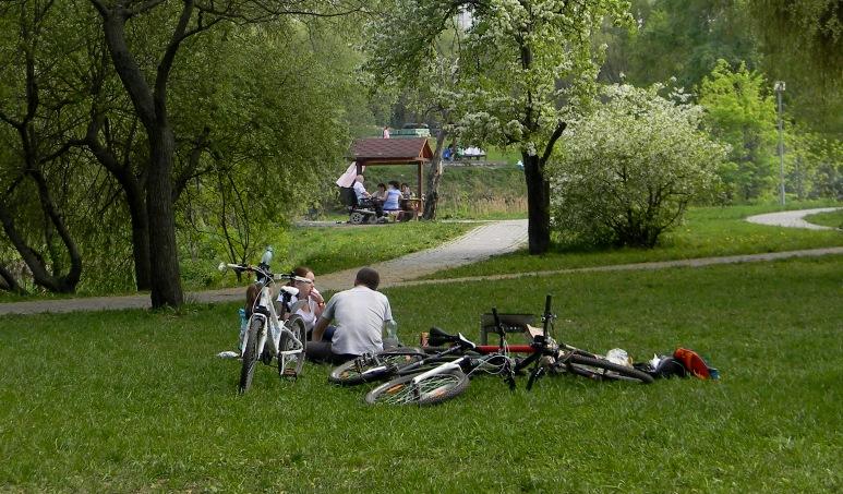 Прокат велосипедов в Москве (4)