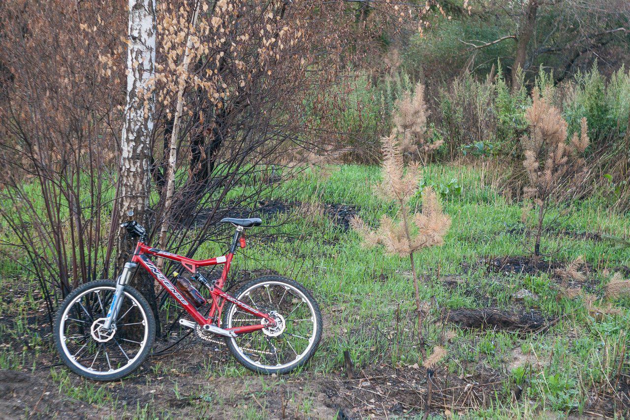Прокат горных велосипедов (1)