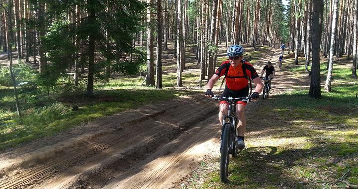 Прокат горных велосипедов (a)